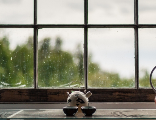 So kannst du deine Fenster streifenfrei putzen